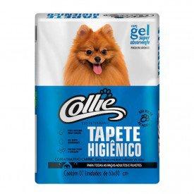 18 tapete higienico collie 7 un 1565956736 arkuero