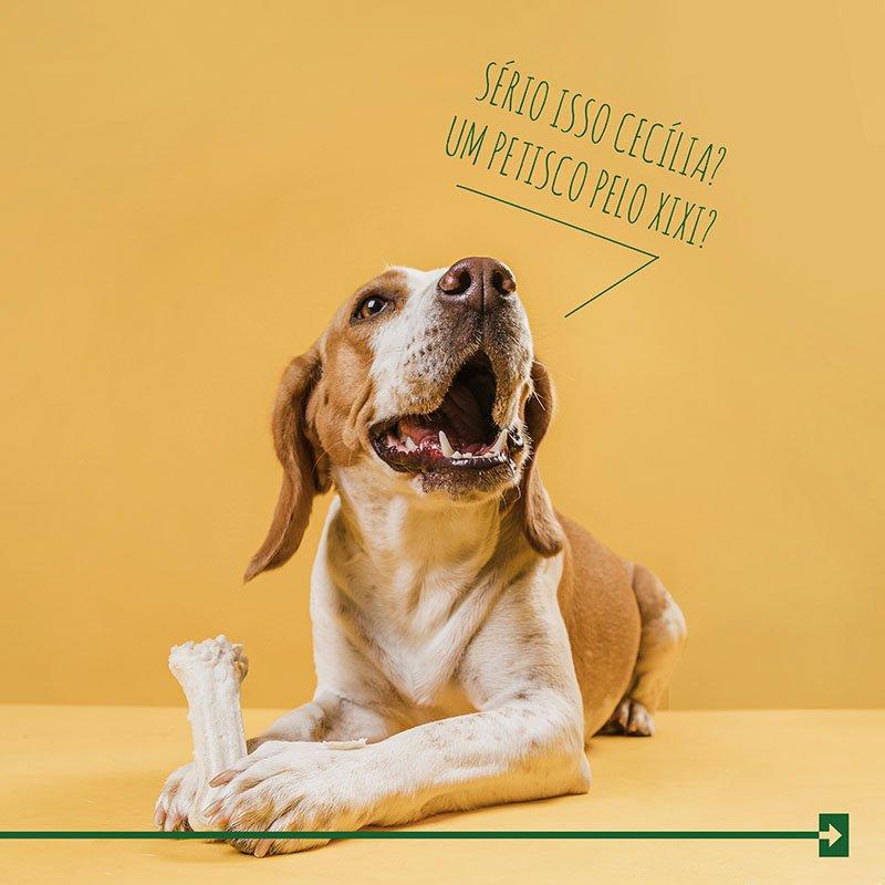 Cachorro tapete higienico petisco arkuero xixi dog pipi cao