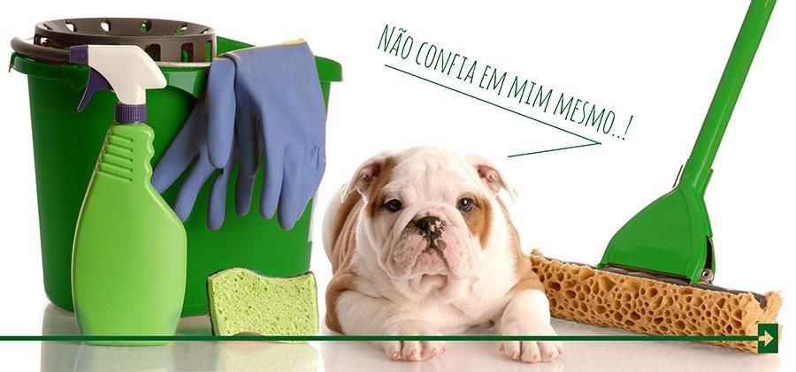 Cachorro tapete higienico arkuero xixi dog pipi cao confia